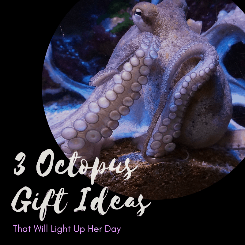 octopus gift ideas for her