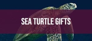 sea turtle themed gifts